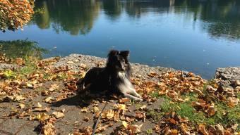 Tilo findet Solothurn auch im Herbst sehr schön.