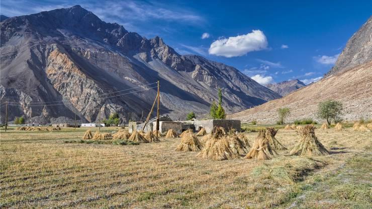 Im Pamir, einem Hochgebirge, das unter anderem in Tadschikistan liegt, wird vor allem Landwirtschaft betrieben. THINKSTOCK