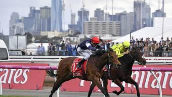 Almandin mit der Nummer 17 und Jockey Kerrin McEvoy gewinnen den diesjährigen Melbourne Cup knapp vor Heartbreak City.