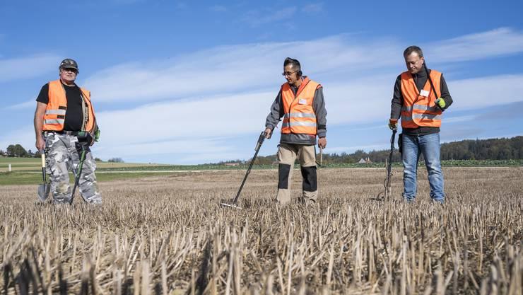 Wolfgang Hümbeli, Markus Rasi und Roman Keller (von links) im Einsatz mit dem Metalldetektor Die drei freiwilligen       Prospektoren suchen systematisch ein abgeerntetes Feld in Schneisingen ab.