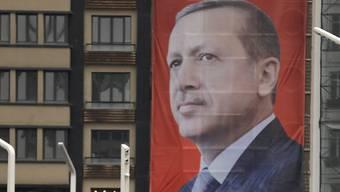 Vertraute des türkischen Präsidenten Recep Tayyip Erdogan werben für das Verfassungsreferendum.