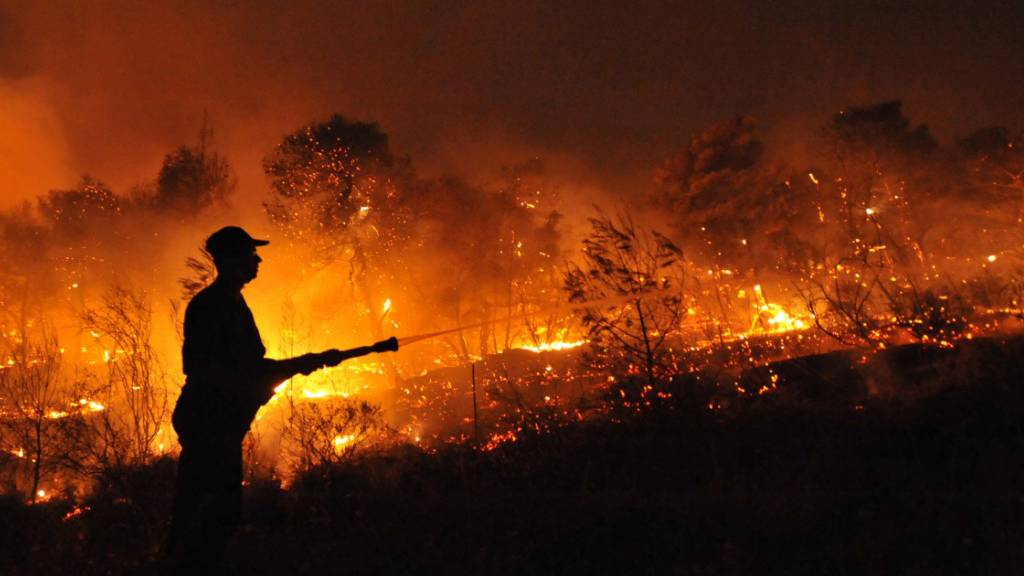 In Nea Makri nordöstlich von Athen ist erneut ein Waldbrand ausgebrochen. (Archivbild)