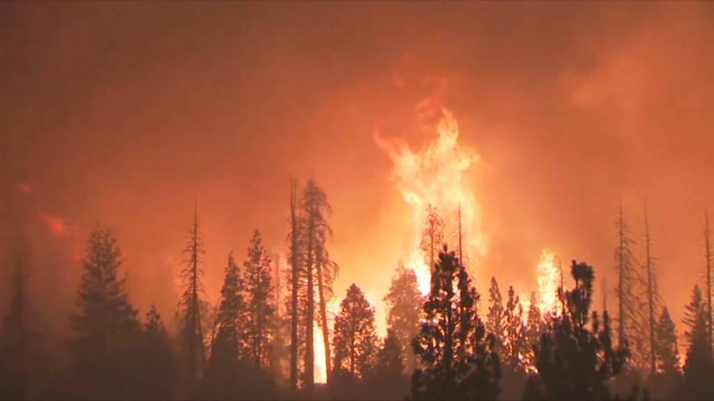Waldbrände: Armee evakuiert Camper mit Helikoptern
