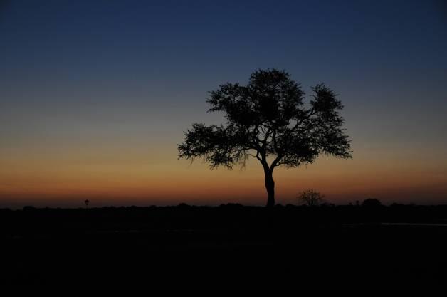 Die Sonnenuntergänge im Hwange-Nationalpark sind atemberaubend.