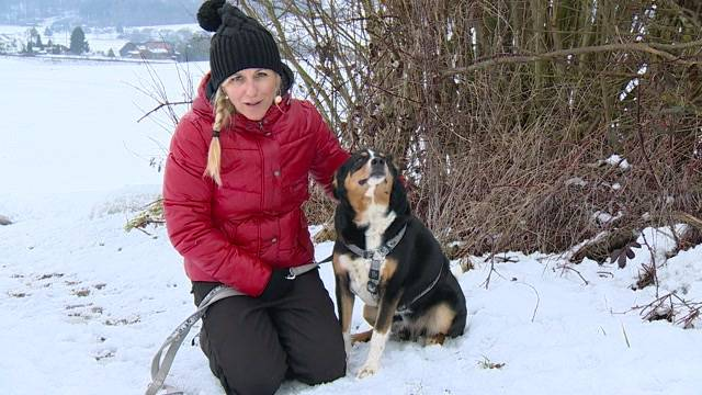 Aus dem Tierheim des Berner Tierschutzvereins in Oberbottigen