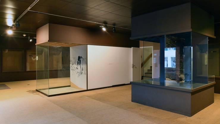 In den Räumlichkeiten des verlassenen einstigen Naturmuseums könnte bereit Ende Jahr die erste Fotoausstellung stattfinden.
