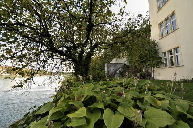 Der Garten der Alten Universität kann dank einer Schenkung durch Karl Schlecht restauriert werden.