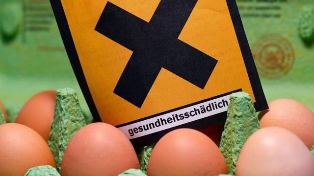 Dank Kennzahlen können Konsumenten in Nordrhein-Westfalen dioxinbelastete Eier erkennen (gestelltes Symbolbild)