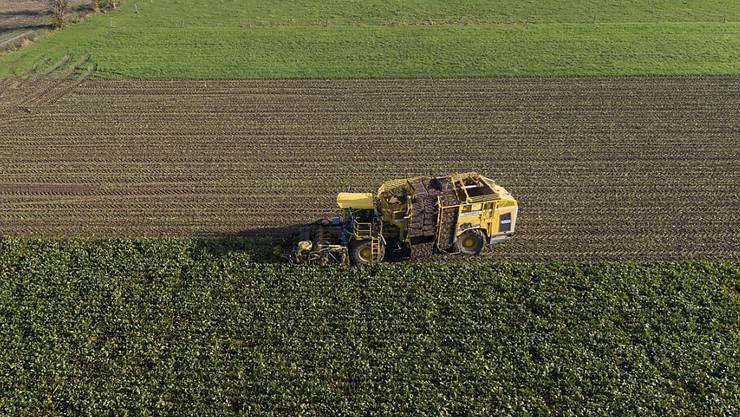 Landwirte sollen das Dreifache des Schätzpreises erhalten, wenn ihnen landwirtschaftliches Kulturland enteignet wird. Der Nationalrat ist am Dienstag dem Vorschlag des Ständerats gefolgt. (Symbolbild)