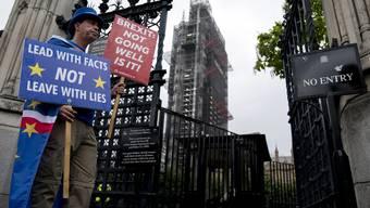 Ein Brexit-Gegner in London.