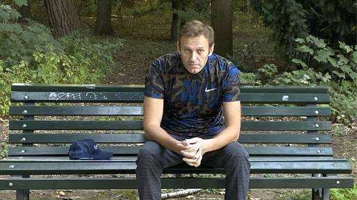 Der Fall Alexei Nawalny in Bildern
