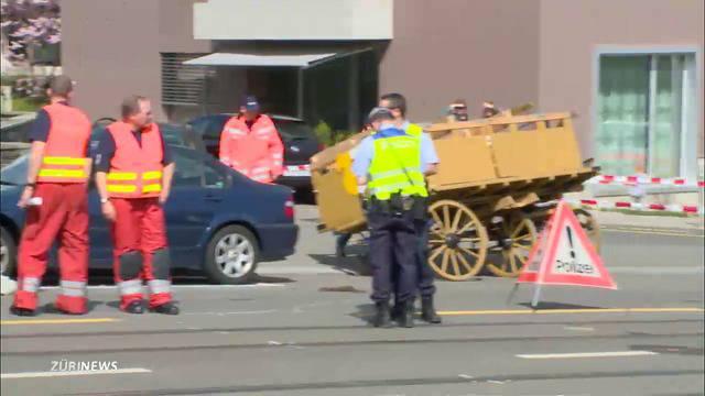 Kutschenunfall fordert drei Verletzte