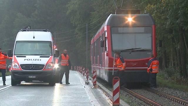 Wildhüter wird von Zug erfasst