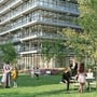 Das Alba-Haus als neues Tor zum Bachgraben: Rückansicht mit öffentlichem Park.