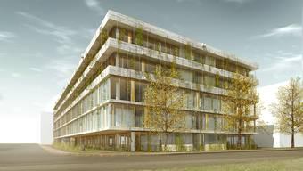 Spatenstich des Schweizerischen Tropen- und Public Health-Institut im Gewerbegebiet Bachgraben in Allschwil.