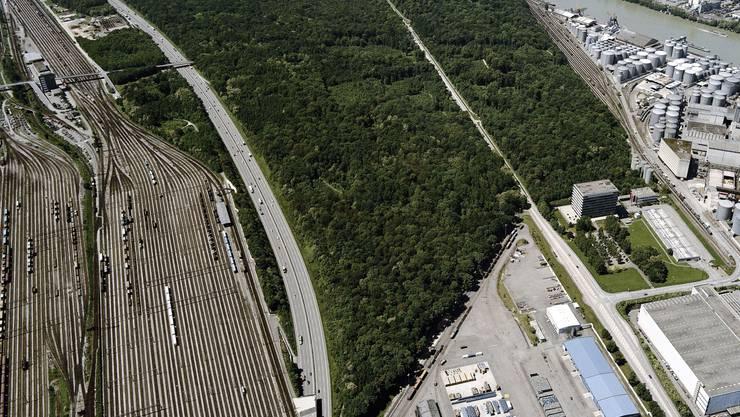 Eng In der Hard kommt vieles zusammen: Chemische Industrie, der Rheinhafen, der Güterbahnhof und die Wasserfassung. (Hardwald / zvg)
