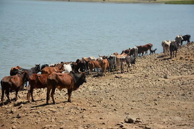 Impressionen von der Eritrea-Reise
