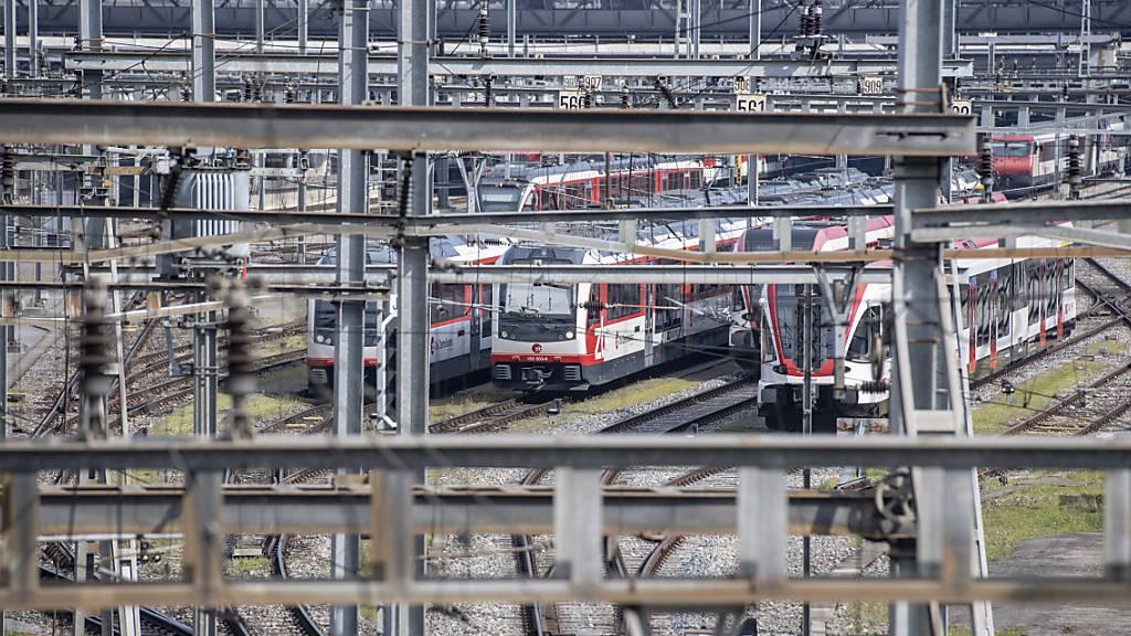 SBB informiert über Durchgangsbahnhof und Abstellanlage in Dierikon