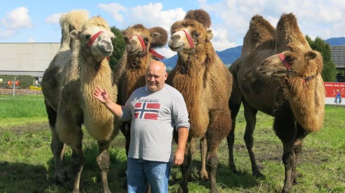 «Gefangen» in Vorarlberg: Circus Berlin sucht Winterquartier