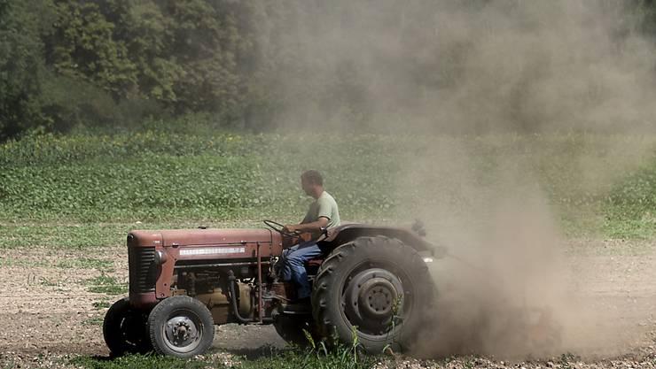 """Bauern handeln vermehrt Online: Der Begriff """"Traktor"""" ist im Jahr 2017 bei """"ricardo.ch"""" am vierthäufigsten ins Suchfeld eingetippt worden. (Themenbild)"""