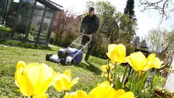 Rasenmähen über Mittag sorgt öfter für Lärmklagen von Nachbarn.