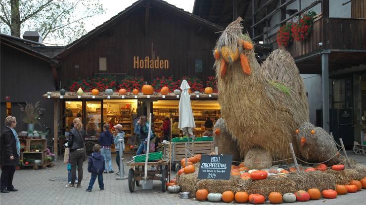 Ein Strohhuhn weist auf das Strohfestival hin, das im Januar auf dem Jucker-Hof in Seegräben erstmals stattfindet.