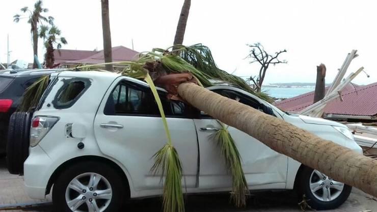 Ein Autodach wurde durch eine umgestürzte Palme auf der Insel St. Martin zusammengedrückt.