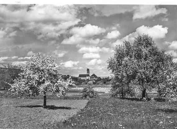 Eine Aufnahme der Alten Kirche Boswil. Das Datum kann nicht eruiert werden. Sicher ist, der Fotograf hat im Frühling auf den Auslöser seiner Kamera gedrückt.