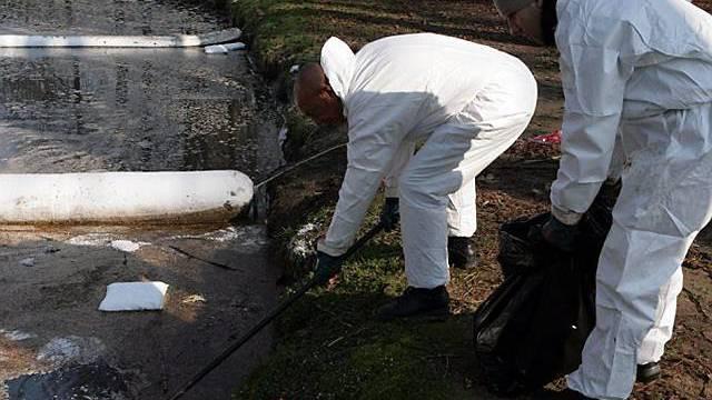 Umweltschützer räumen um den Fluss Lambro grossräumig auf