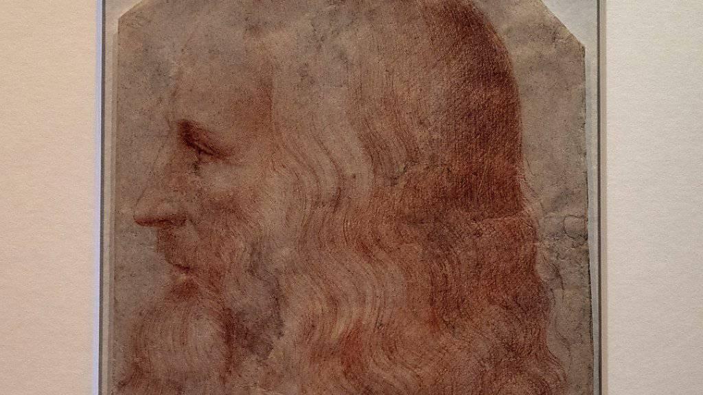 Neues Porträt von da Vinci entdeckt