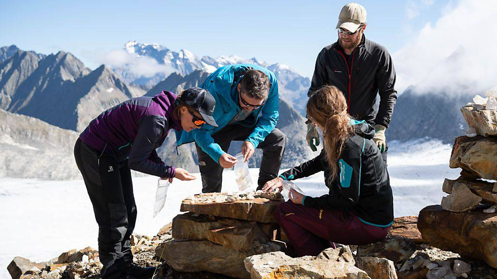 Archäologen graben in 2800 Metern Höhe nach Spuren der ersten Strahler