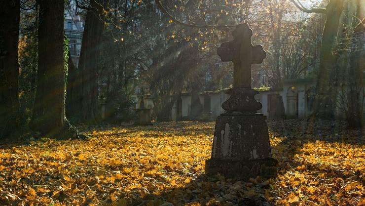 Das Sterbehilfe-Verbot ist in Deutschland nicht mehr länger gültig. (Bild: Pixabay)