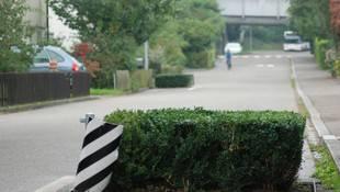 Unglücksort: In einer solchen Pflanzgrube an der Goldernstrasse, damals noch ohne Hecke, stürzte der Velofahrer 2006 zu Tode. (to)