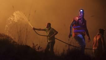 Waldbrände in Portugal und Spanien