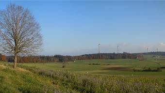 Von der Siedlung Hämikerberg in Hitzkirch wären alle vier Windräder zu sehen. Die Anlagen haben eine Gesamthöhe von 229 Metern und einen Rotordurchmesser von 158 Metern.