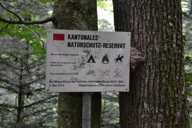 Und plötzlich waren die Wanderer im Kanton Solothurn