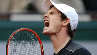 Andy Murray musste gegen Radek Stepanek lange Zeit leiden