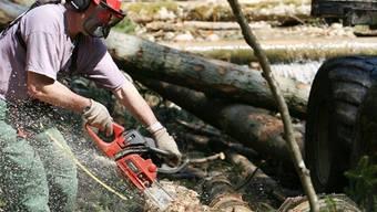 Es wird immer weniger Stammholz genutzt. Eine Chance für Energieholz. Key