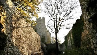 Die Ruine wird für rund 7 Millionen Franken instand gestellt.