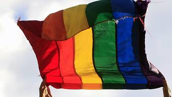 Die Regenbogen-Fahne als Symbol für LGBTI (Lesben, Schwule, Bisexuelle, Transgender und Intersexuelle) (Symbolbild)
