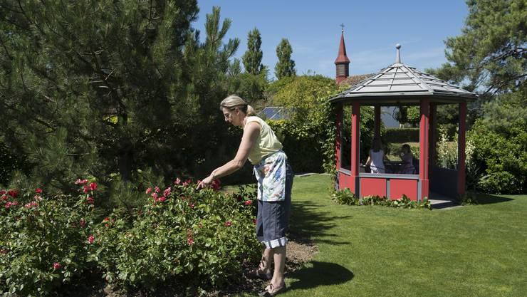 Elisabeth Indermühle arbeitet fast täglich ein bis zwei Stunden im Garten