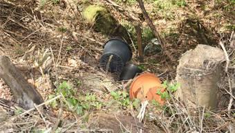 In den Wäldern in der Region wird immer wieder illegal Grüngut entsorgt und damit die Ausbreitung von exotischen Pflanzen begünstigt. (Themenbild)