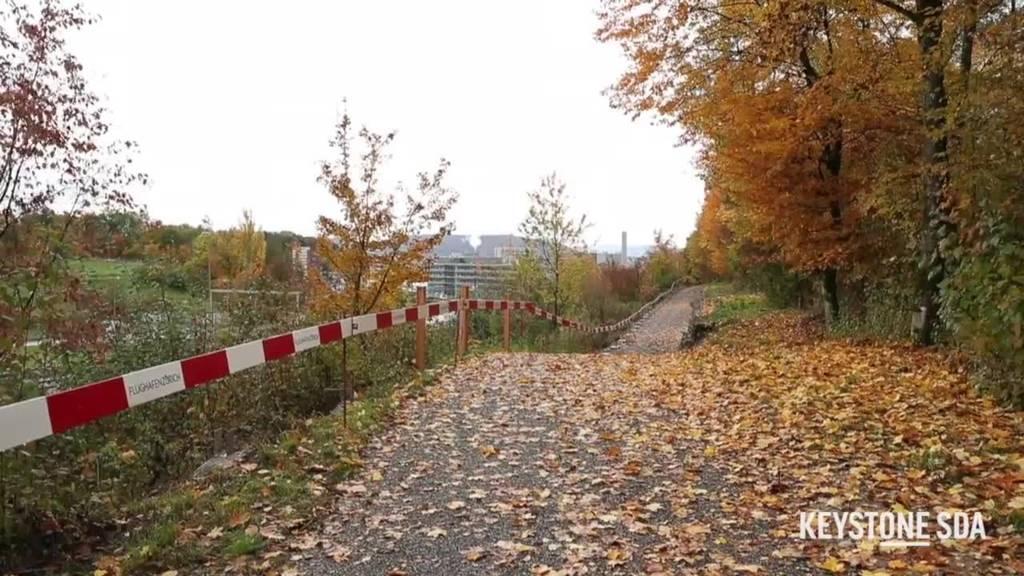 Neuer Park beim «Circle»: Kleines Naturidyll neben dem Flughafen
