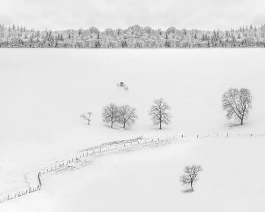 Weiss! Im Schenkenbergertal. Fotografiert von Leser Pino Stranieri.