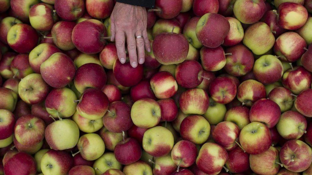 Die Schweiz schotte ihren Agrarmarkt ab - wenn es um ihre eigenen Güter gehe, fordere sie jedoch freien Zugang zu den Märkten, kritisiert Caritas (Symbolbild)