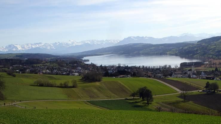 Blick vom Eichberg über den «Lebensraum Lenzburg-Seetal». (Archiv)