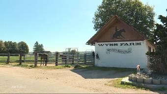In Fulenbach kam es am Mittwoch zu einem Reit-Drama. Ein 8-jähriges Mädchen stürzte von einem Pferd und verletzte sich dabei tödlich.