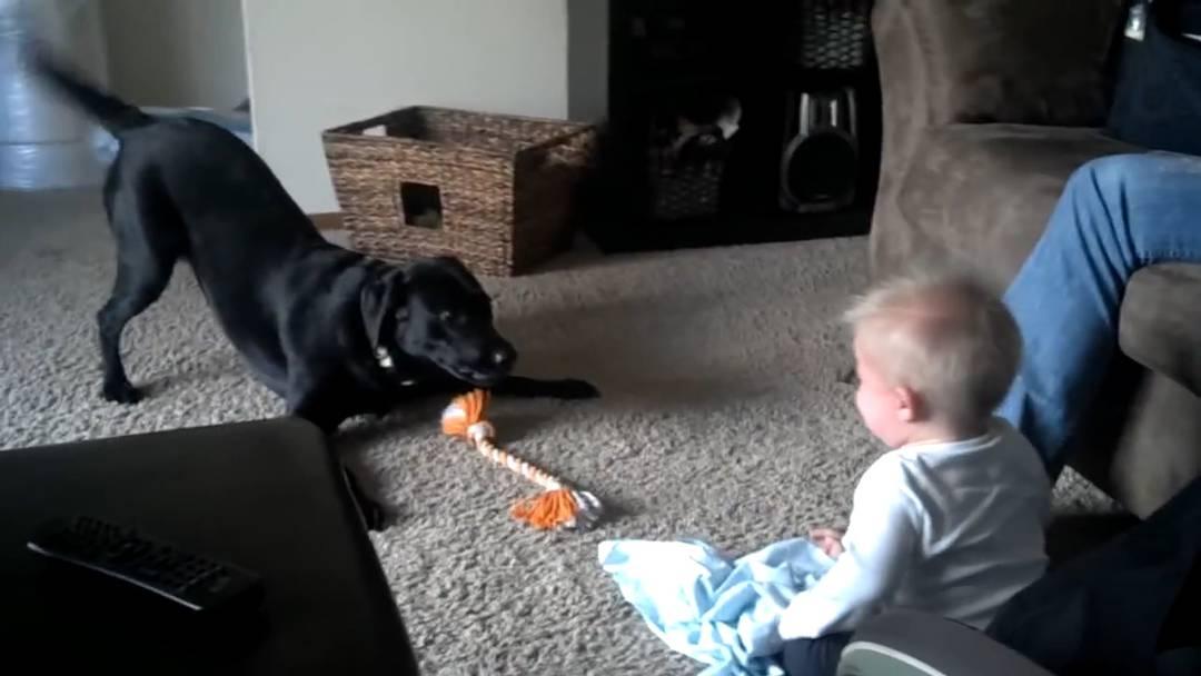 Hund bellt, Baby lacht und irgendwann flippen beide total aus.