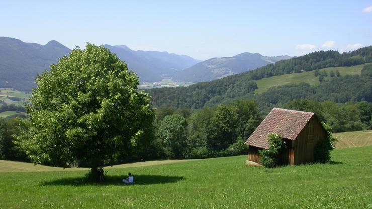 12. Etappe: 6 Kilometer von Mümliswil nach Holderbank.