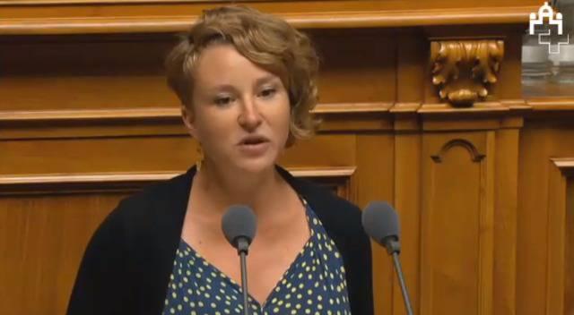 Nur noch 2.-Klass-GA für Parlamentarier? Irène Kälins Votum